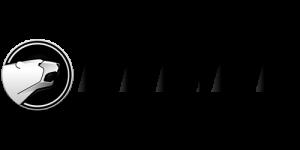 bering-logo